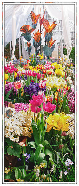 Photograph - Flower Show by Sandy Scharmer