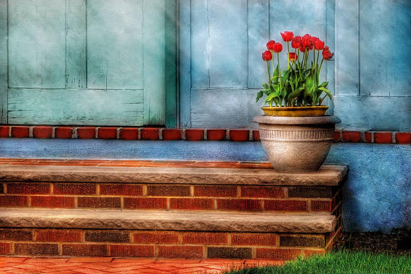 Photograph - Flower - Tulip - A Pot Of Tulips by Mike Savad