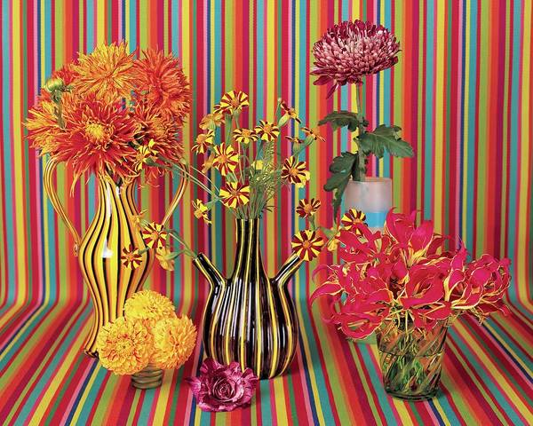 Photograph - Flower Vases Against Striped Fabric by Lisa Charles Watson