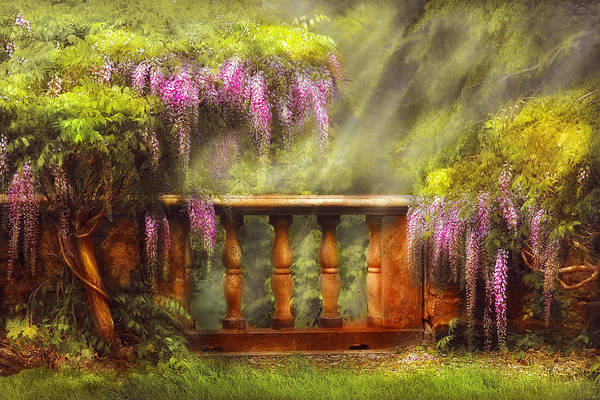 Artful Photograph - Flower - Wisteria - A Lovers View by Mike Savad