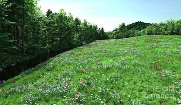 Wild Poppies Digital Art - Flowering Meadow And Stream by Fairy Fantasies
