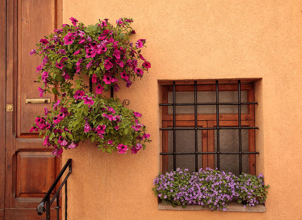 Photograph - Flowers And A Window by Uri Baruch