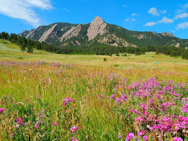 Photograph - The Flatirons Colorado by Dan Miller