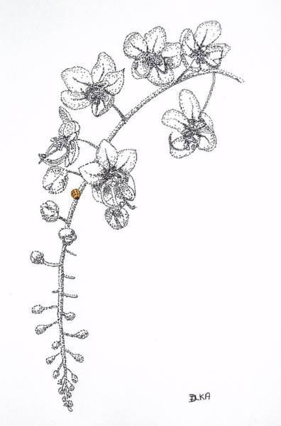 Lady Bug Drawing - Flowers And Ladybug by Dianne  Ilka