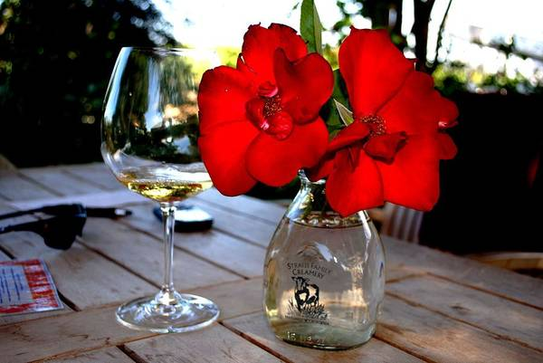 Wall Art - Photograph - Flowers And White Wine In Caneros by Ron Bartels