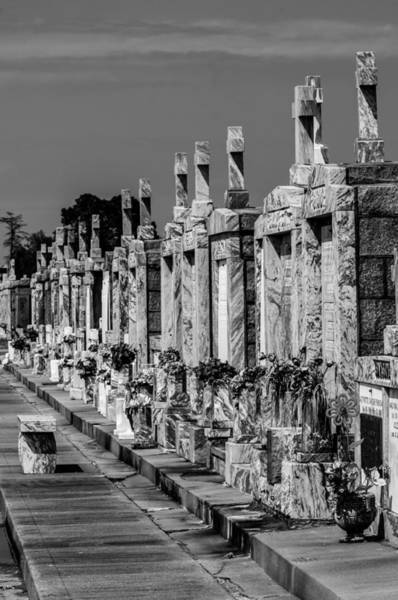Photograph - Flowers At Greenwood Cemetery New Orleans by Andy Crawford