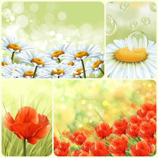 Poppies Digital Art - Flowers Collage by Veronica Minozzi