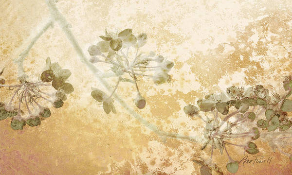 Romantic Flower Mixed Media - Flowers Delicate Buds  by Ann Powell