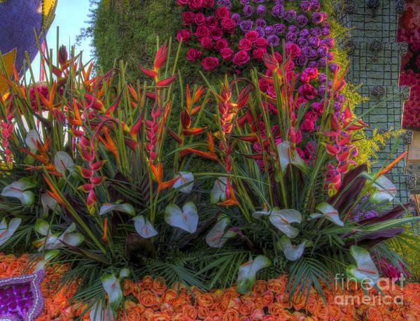 Photograph - Flowers Everywhere by Mathias