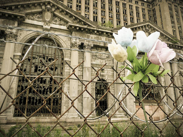 Photograph - Flowers For Detroit by Priya Ghose