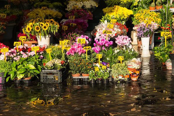 Photograph - Flowers For Sale At Campo De Fiori - My Favourite Market In Rome Italy by Georgia Mizuleva