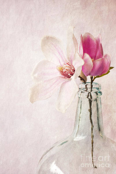 Photograph - Flowers In A Bottle by David Lichtneker