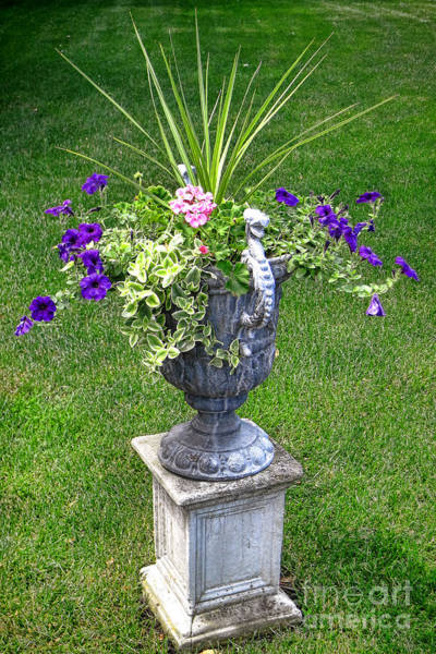 Wall Art - Photograph - Flowers In Garden Urn by Olivier Le Queinec