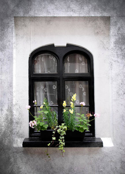 Wall Art - Photograph - Flowers On Window by Mark Rogan