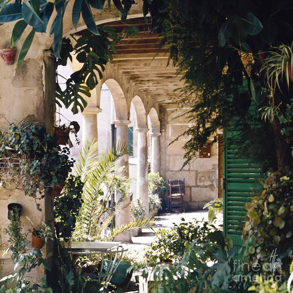 Flowery Majorquin  Patio In Valdemosa Art Print