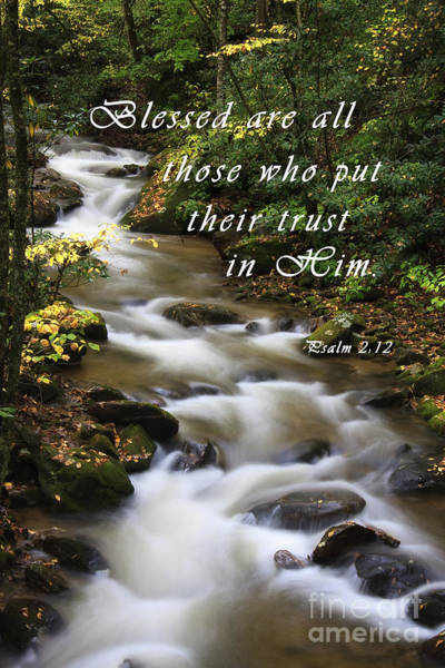Photograph - Flowing Creek With Scripture by Jill Lang