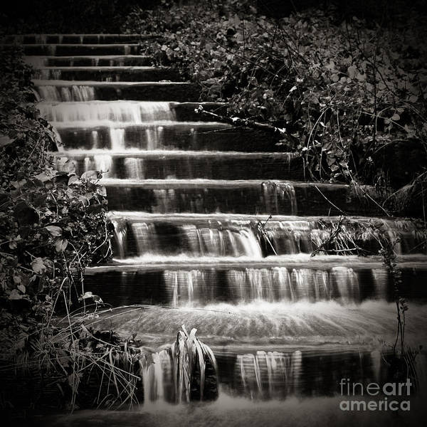 Photograph - Flowing Stairs by Charmian Vistaunet