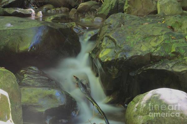 Ohau Wall Art - Photograph - Flowing Stream by Jacob Holyfield