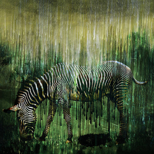 Altered Digital Art - Flowing Stripes by Marian Voicu