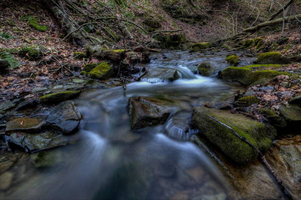 Photograph - Flowing Waters by David Dufresne