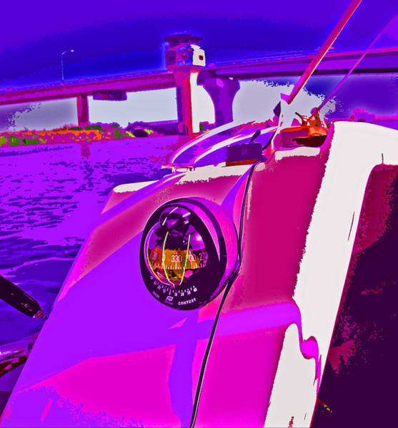 Photograph - Floyd Pink And Purple by Joseph Coulombe
