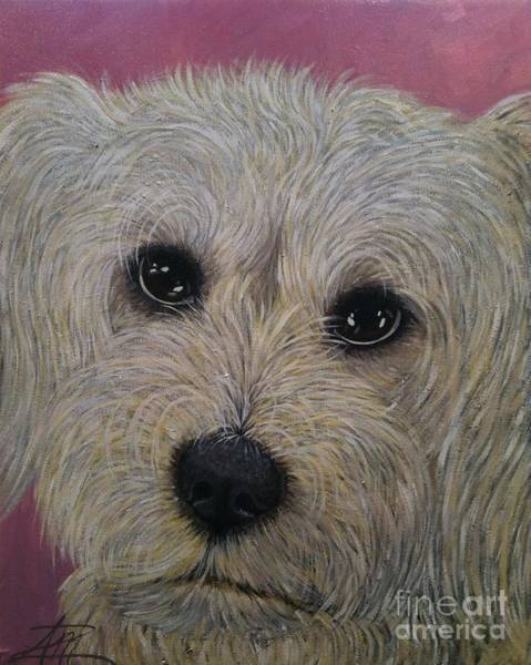 Painting - Fluffy by Ana Marusich-Zanor