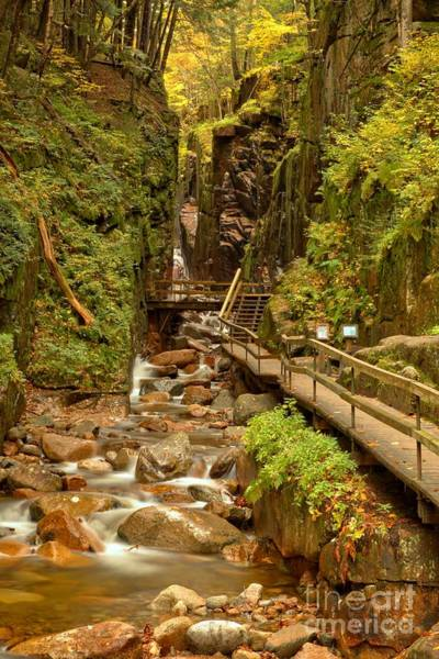 Photograph - Flume Gorge At Franconia Notch by Adam Jewell