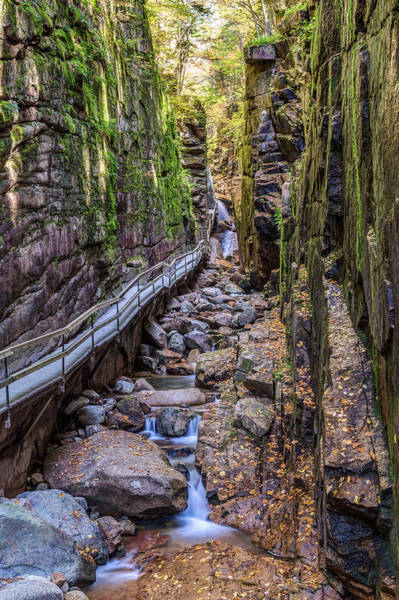 Photograph - Flume Gorge In Franconia Notch Nh by Pierre Leclerc Photography