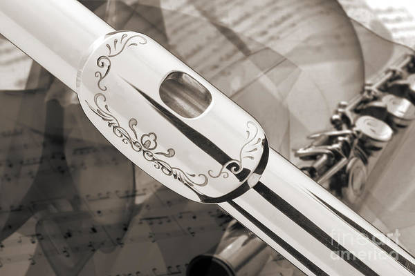 Photograph - Flute Music Instrument Lip Plate Photo In Sepia  3442.01 by M K Miller