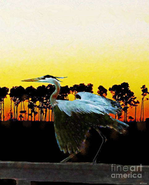 Digital Art - Fly Away Bird by Lizi Beard-Ward