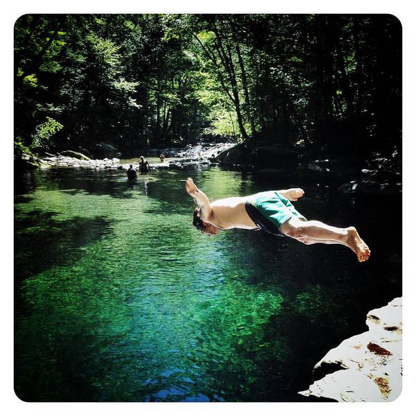 Catskills Photograph - Fly Dive by Natasha Marco