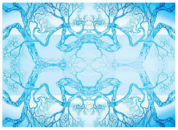 Digital Art - Fly Free by Brian Kirchner