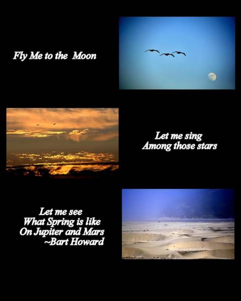 Photograph - Fly Me To The Moon by AJ  Schibig