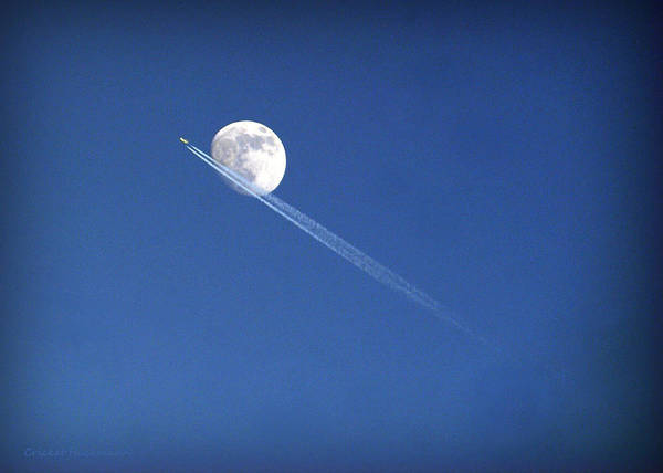 Photograph - Fly Me To The Moon by Cricket Hackmann