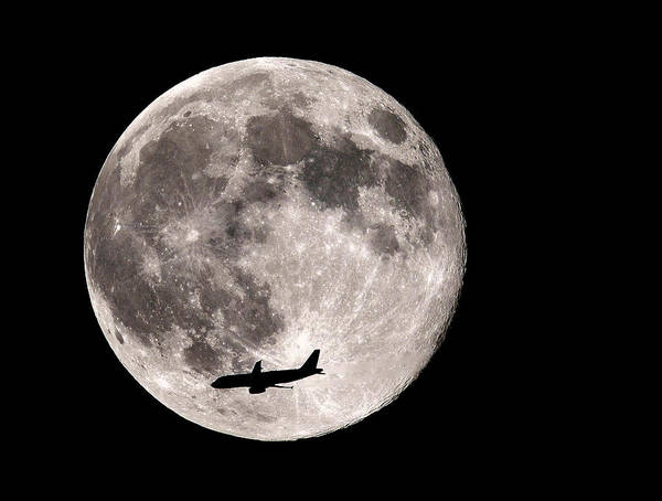 Photograph - Fly Me To The Super Moon by William Jobes