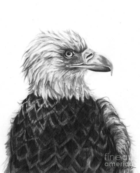 Bald Eagles Drawing - Fly On Free Wings by J Ferwerda