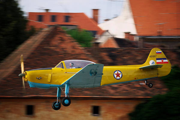 Photograph - Flying Low by Ivan Slosar