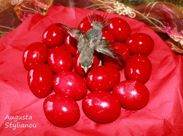 Photograph - Flying Over Red Eggs by Augusta Stylianou