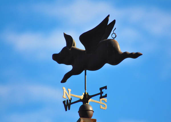 Weather Vane Photograph - Flying Pig by Bill Cannon