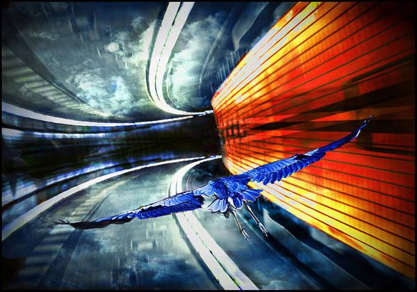 Digital Art - Flying by Rick Mosher