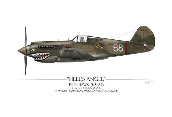 Volunteer Wall Art - Painting - Flying Tiger P-40 Warhawk - White Background by Craig Tinder