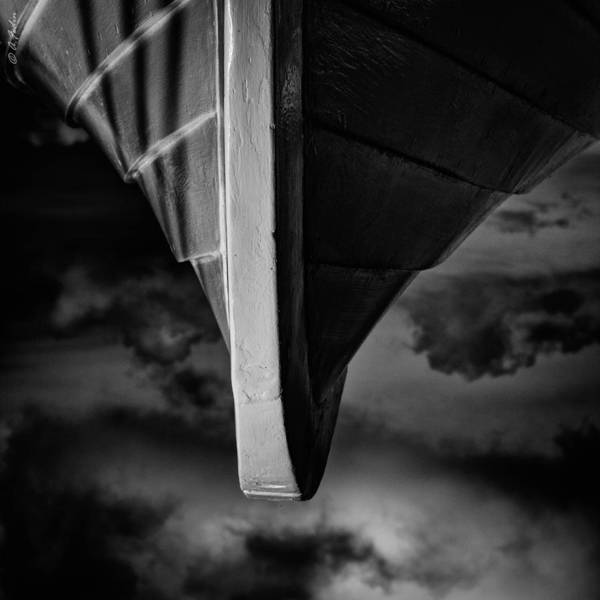 Photograph - Flying Up There by Alexander Fedin