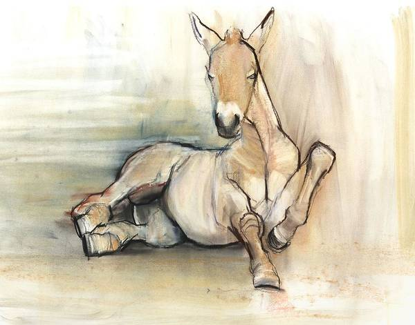 Foal Photograph - Foal, 2012, Charcoal Conté And Pastel On Paper by Mark Adlington