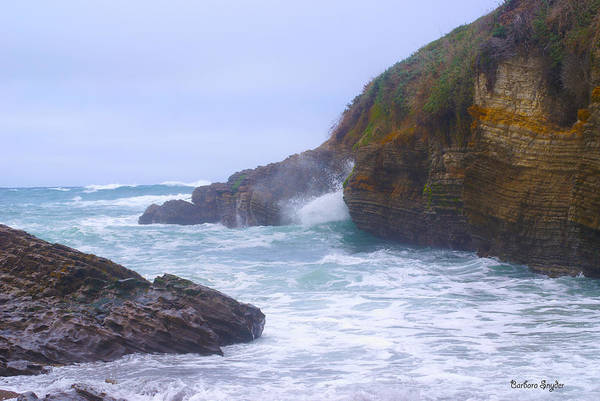 Montana De Oro State Park Photograph - Foam In The Fog by Barbara Snyder