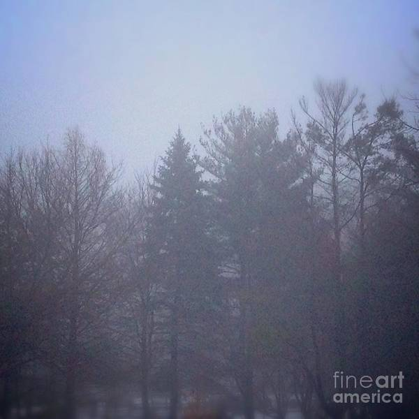 Photograph - Fog And Mist by Frank J Casella