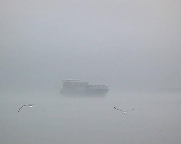 Fog Bound Art Print