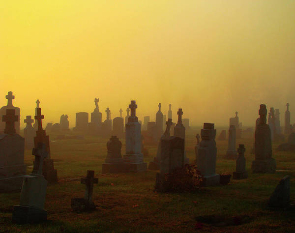 Halloween Photograph - Looks Like Halloween Morning Scene by Gothicrow Images