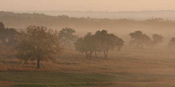 New Braunfels Photograph - Fog In The Hills 2 by Paul Huchton