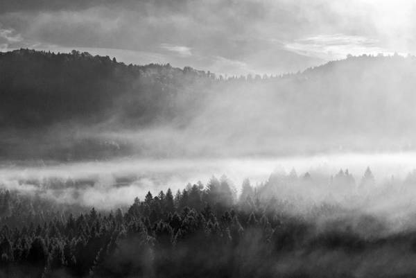 Wall Art - Photograph - Fog In The Valley by Yuri San