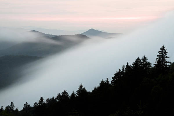 Treeline Photograph - Fog On The Mountain by Bill Swindaman